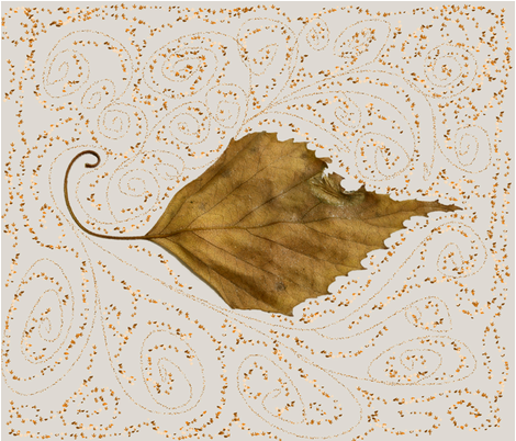 curling, swirling, leaf fabric by sewpersonal_designs on Spoonflower - custom fabric