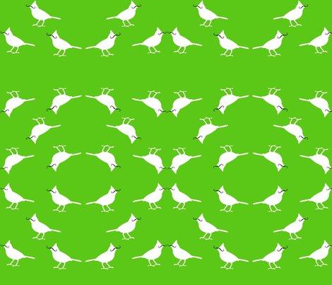 Rmustache_birds_ed_shop_preview