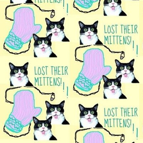 Lost Their Mittens!