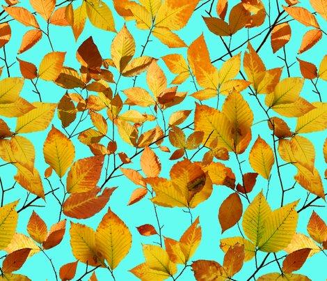 Patricia-shea-autumn-leaves-photographic_shop_preview