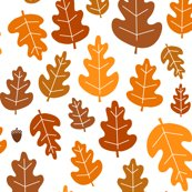 Rrrrrrrleaf-leaf-acorn_shop_thumb