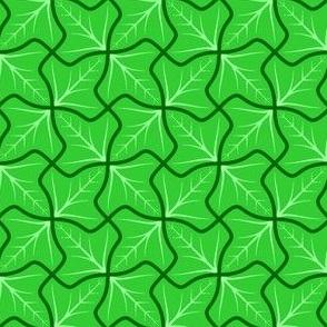 ivy 4g