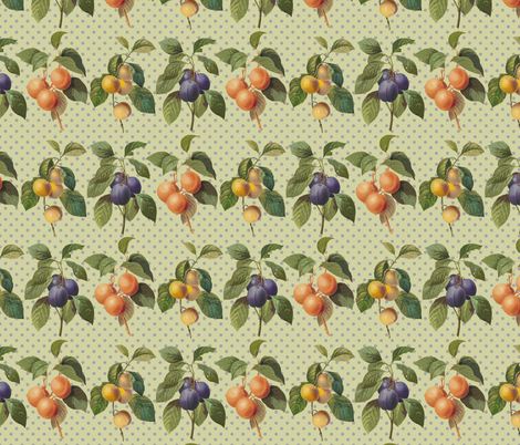 Redoute fruit, plums, abricot fabric by chantal_pare on Spoonflower - custom fabric
