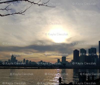 Chicago skyline Sunset branches