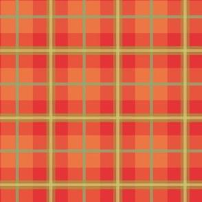 Japanese Maple Coordinate 1
