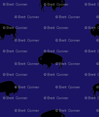 buffalo_repeat_sm_image