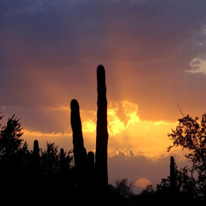 Desert Sunset Photo