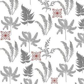 Graphic Ferns
