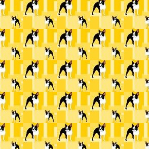 Sunny Boston Terrier tiles