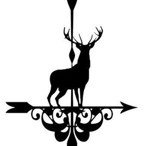 windy elk