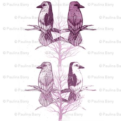 Bird4_preview