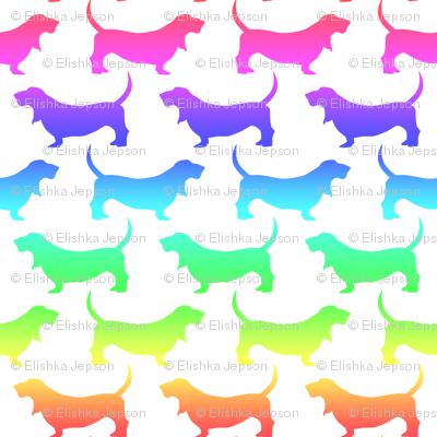 Rainbow Bassets