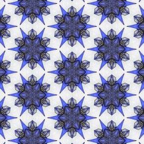 Erscolen's Cobalt Star
