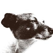 Jack in Profile-Pen