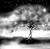 LUMINESCENT TREE B&W 1YARD