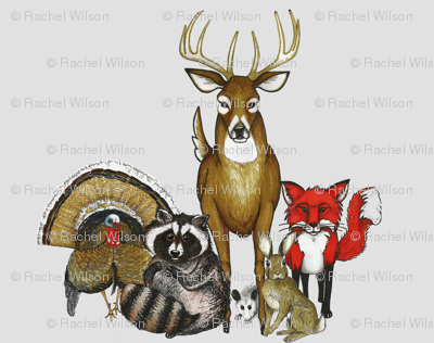 Woodland Animal Group