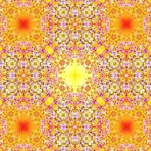 24_Mimicry