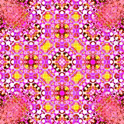 28_Mimicry