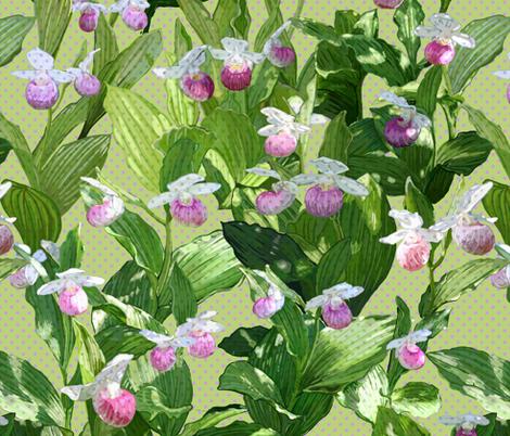 Showy Lady's Slipper - Light  fabric by chantal_pare on Spoonflower - custom fabric