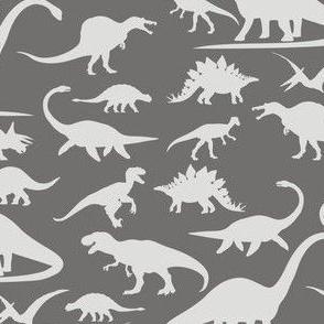 Dino Walk Grey