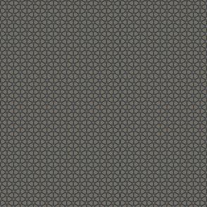 match_pattern