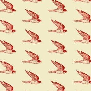 peregrine falcon rust on golden tan