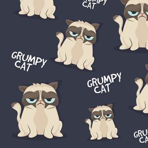 Grumpy -looking Cat