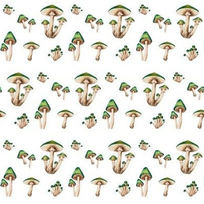 Mushroom Forest in Green
