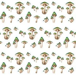 Mushroom Forest in Green