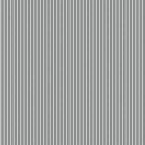 gray stripe
