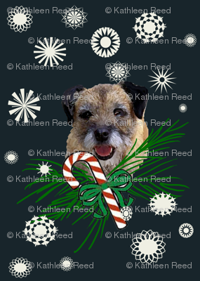 border_terrier_Christmas_with snowflakes