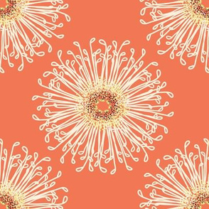 Creamsicle flowers