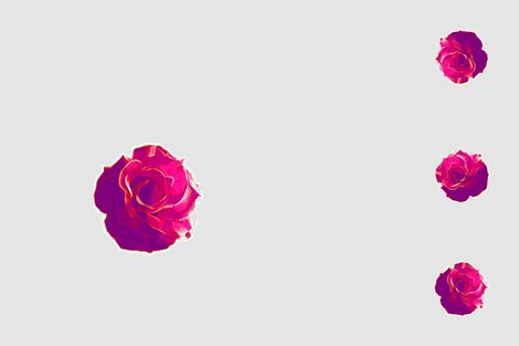 Rcarolynnes_second_rose_shop_preview