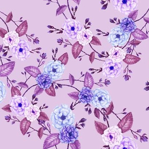 Rose Lilac, Purple