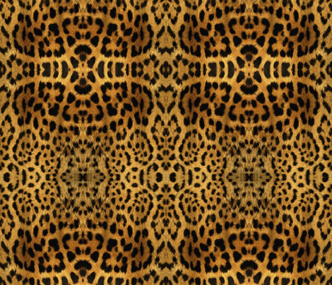 Furry leopard print fabric by whimzwhirled on Spoonflower - custom fabric