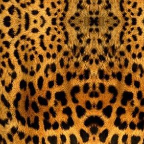Furry leopard print