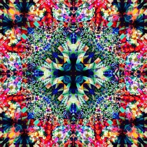 203_Eye_Spy_Through_The_Kaleido_Eye