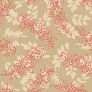 Coral Acacia Flowers on Beige
