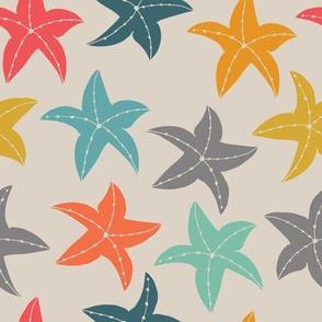 colourful star fish