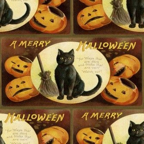 Halloween Vintage Postcard Black Cat