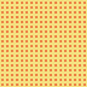 Garden Wicker Weave in Soft Yellow and Orange