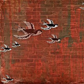 mauerschwalbe