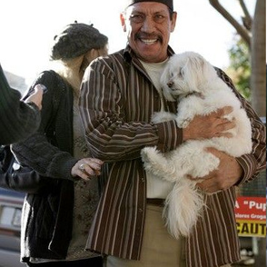 Danny Trejo With a Puppy