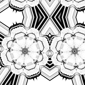 black and white flower-ed-ed-ed