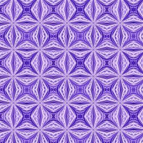 Star Window Purple 2-ed