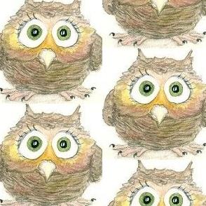 Noel The Owl
