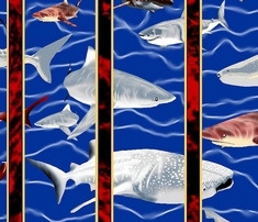 Rstriped__sharks_in_long_windows_with_redblack_stripes_comment_390276_thumb