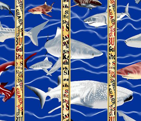 Shark Aquarium 4.
