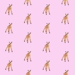 Fawn, Bubblegum Pink