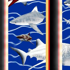 Shark_Haven